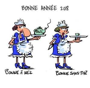 2018 bonne annee humour